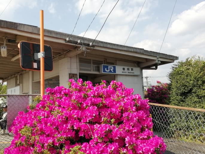 Makimukueki