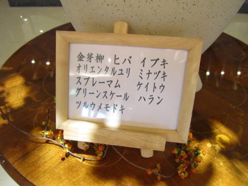 Img_3969